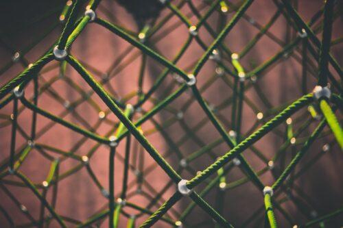 Netwerk | Autopoiesis